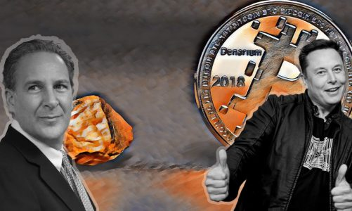 Elon Musk explains Bitcoin's value proposition to gold bug Peter Schiff