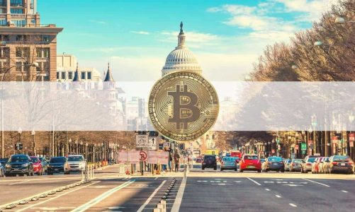 First US Stimulus Check Now Worth Almost $9,000 if Invested in Bitcoin