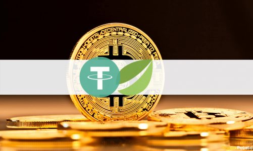 Bitfinex Derivatives Launches Contracts for Tether Gold-Bitcoin With up to 100x Leverage
