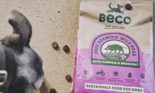 Made in Britain: Sustainable pet foods brand, Beco