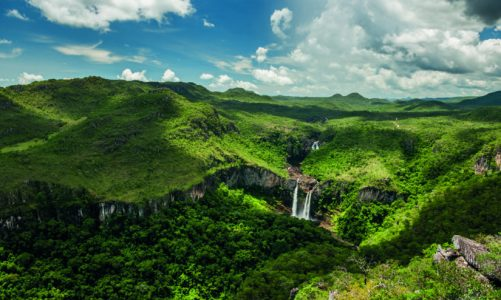 Amazon invests in Nature-Based Carbon Removal Solutions in Brazil