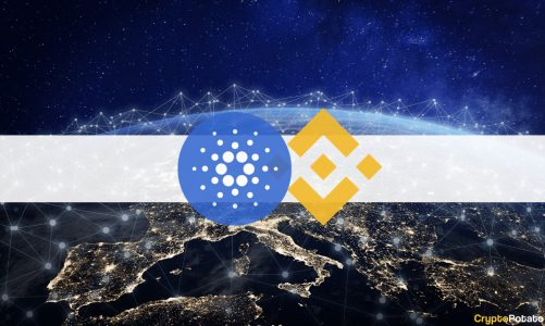 Binance Will Support Cardano's Hard Fork Occuring on September 12