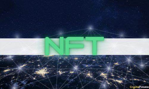 Less Than 17% Addresses Control Over 80% of NFTs on Ethereum: Report